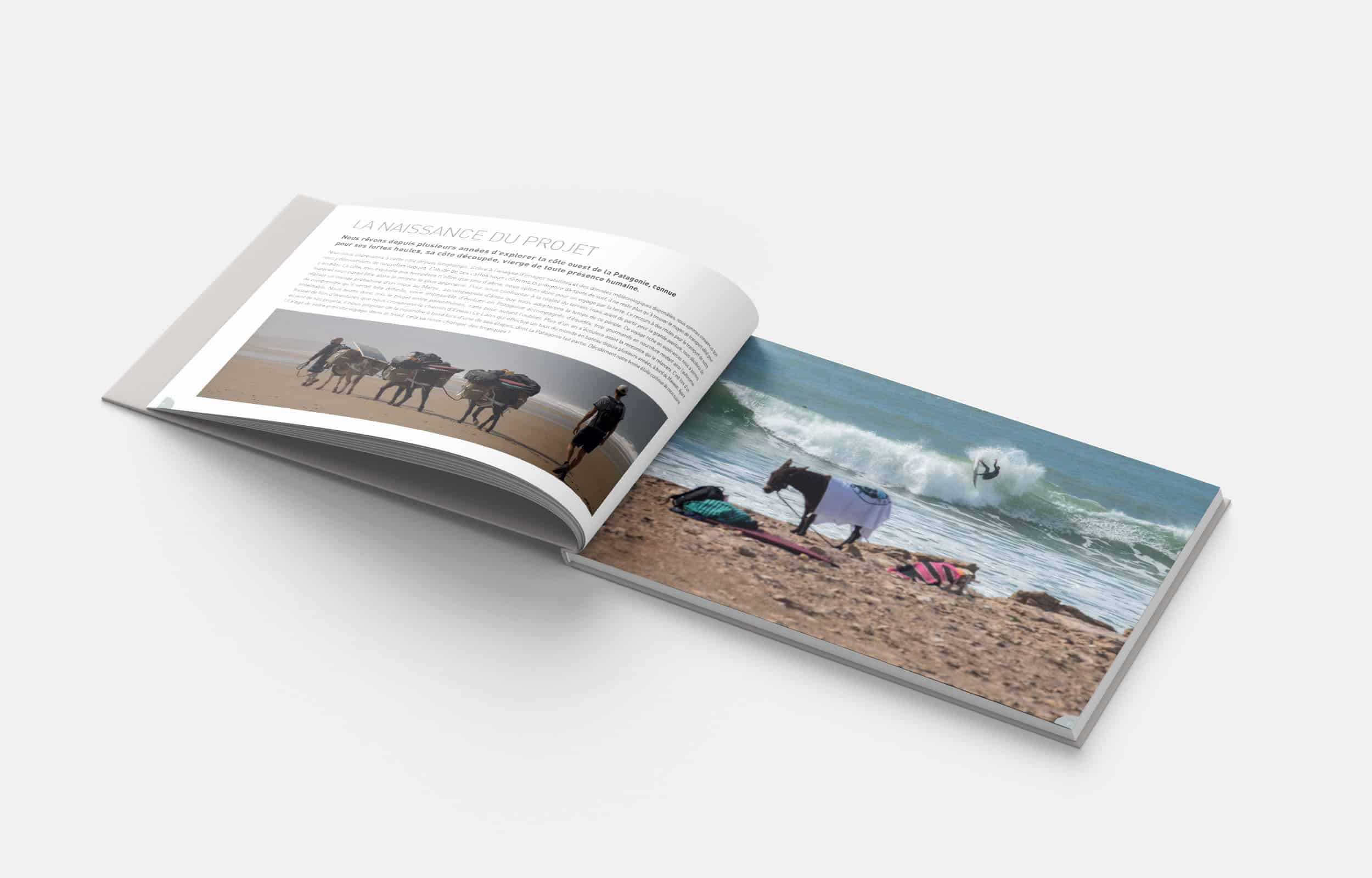 Lost in the swell – Livre